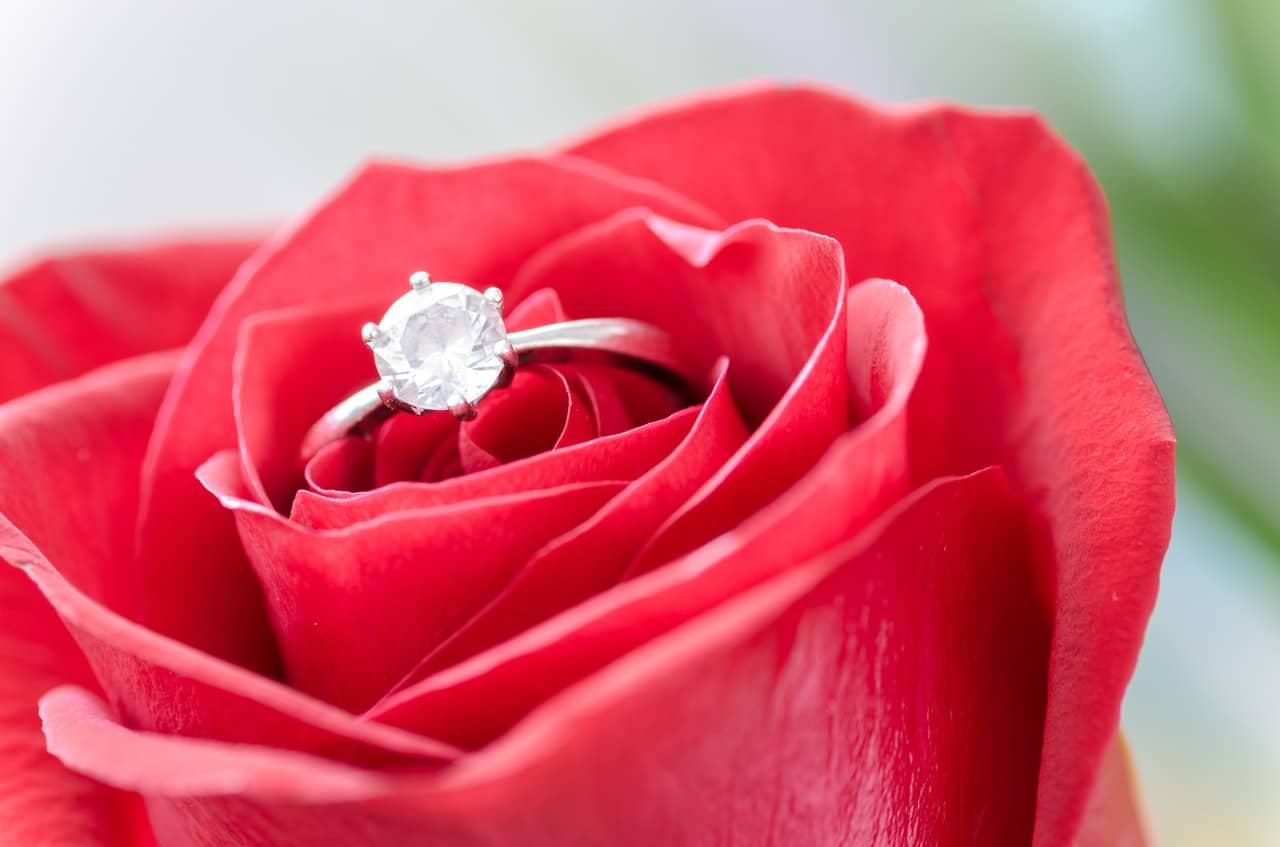 sterling silver engagement ring placed in a rose